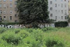 Nr.01c_67_2010