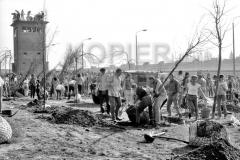 Nr03-94_1.4.1990-Falkplatz-Baumpflanzung-