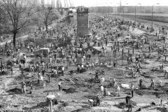 Nr03-96_1.4.1990-Falkplatz-Baumpflanzung-