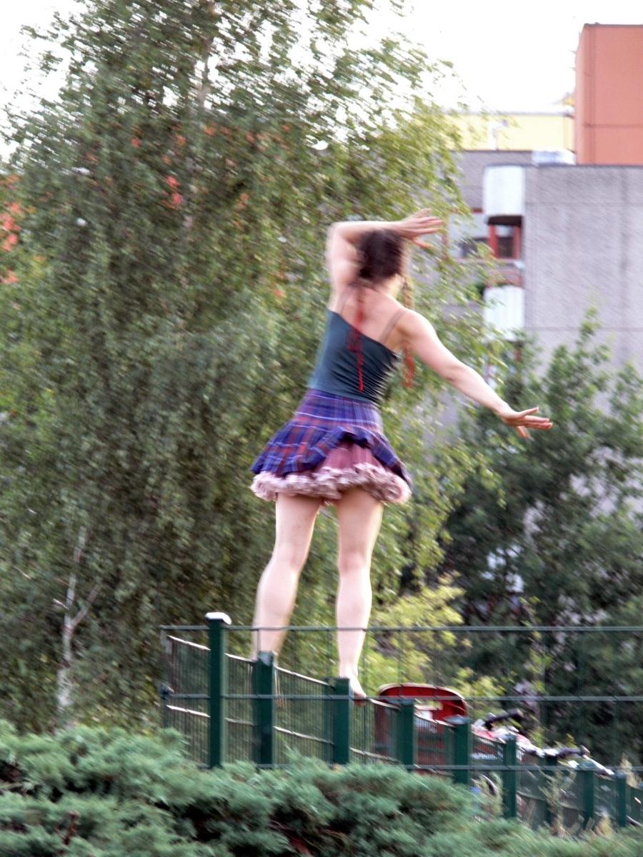 Nr.02c_131_Mauerpark-26.7.2009