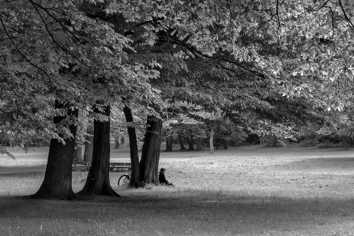 Nr.02c_158_Pankow-Schlosspark-2014-