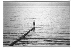 Nr08-13_Hiddensee-1994