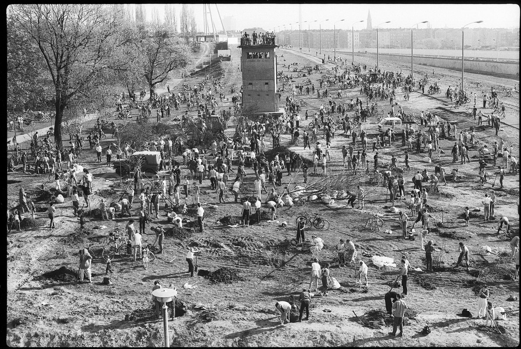 Nr02-044_Mauerpark-Baumpflanzung_1.4.1990