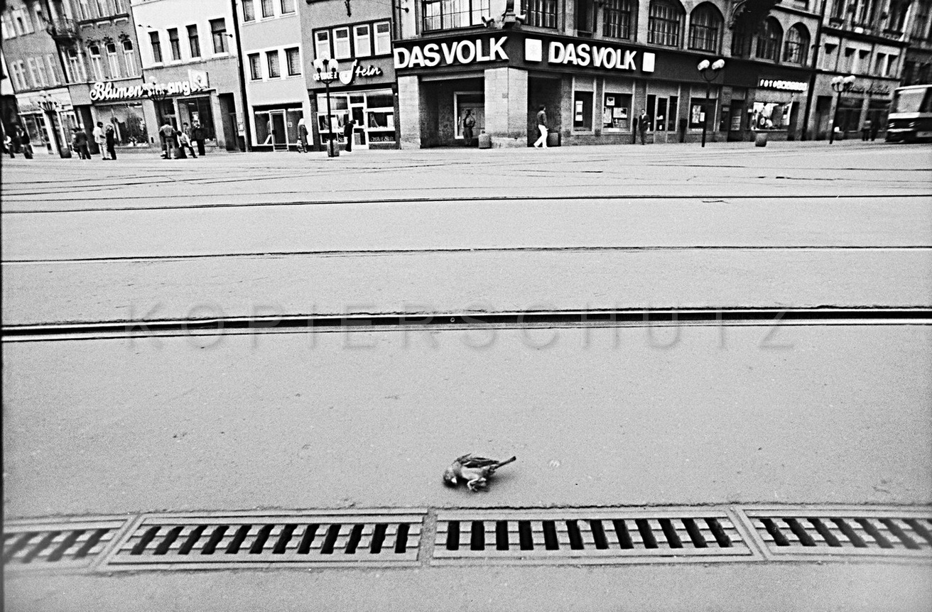 Nr13-045_Erfurt-1981