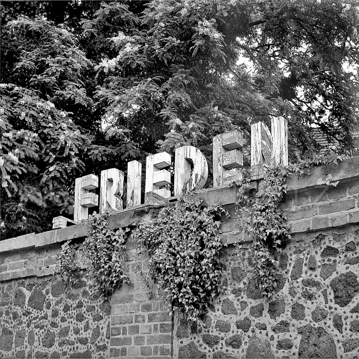 Nr13-057_Ludwigslust-1983